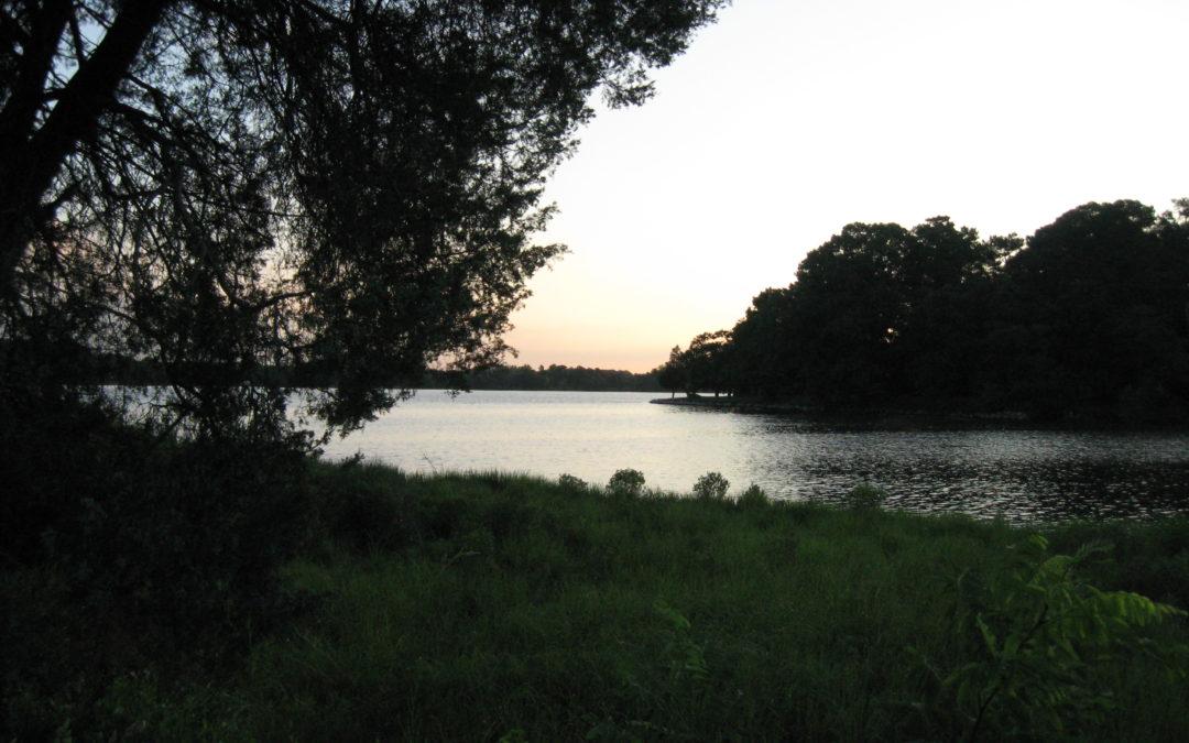 "Rachel Carson's ""Silent Spring"""